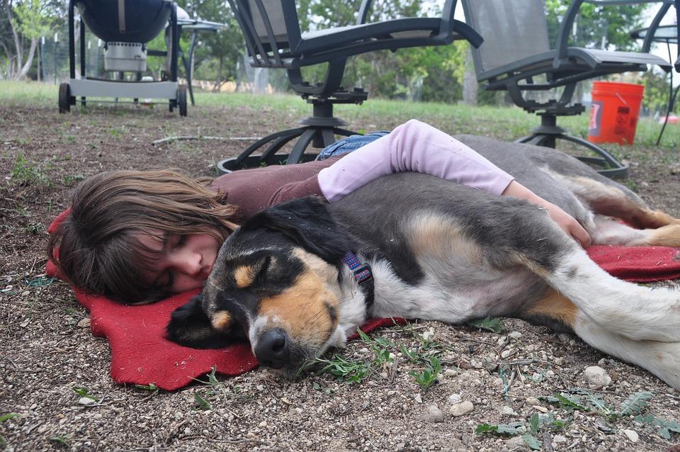 Dog, Girl, Friendship, Napping, Nap, Sleep, Sleeping