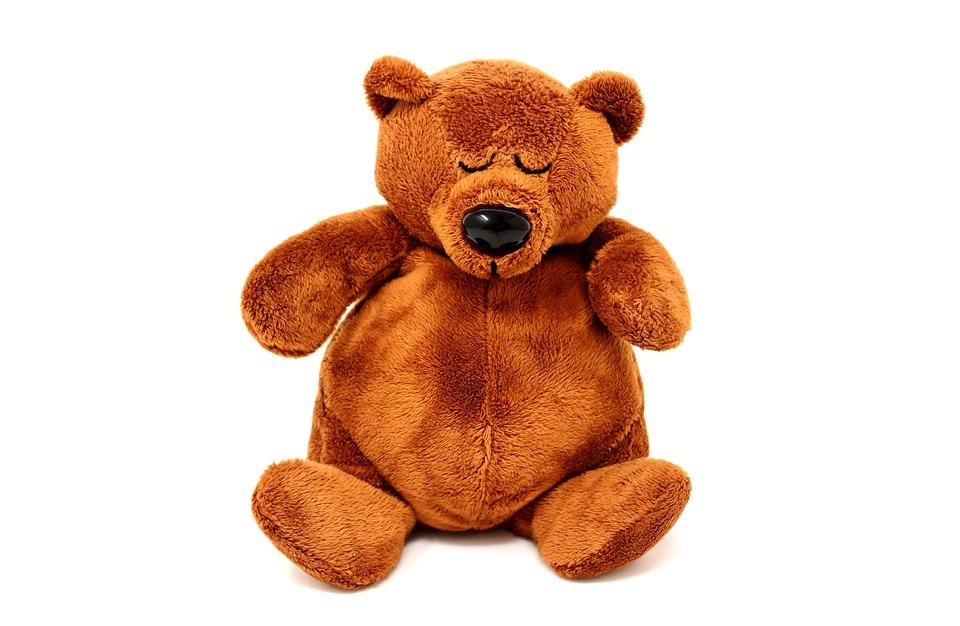 free photo sleeping teddy bear bears sweet cute funny plush max pixel