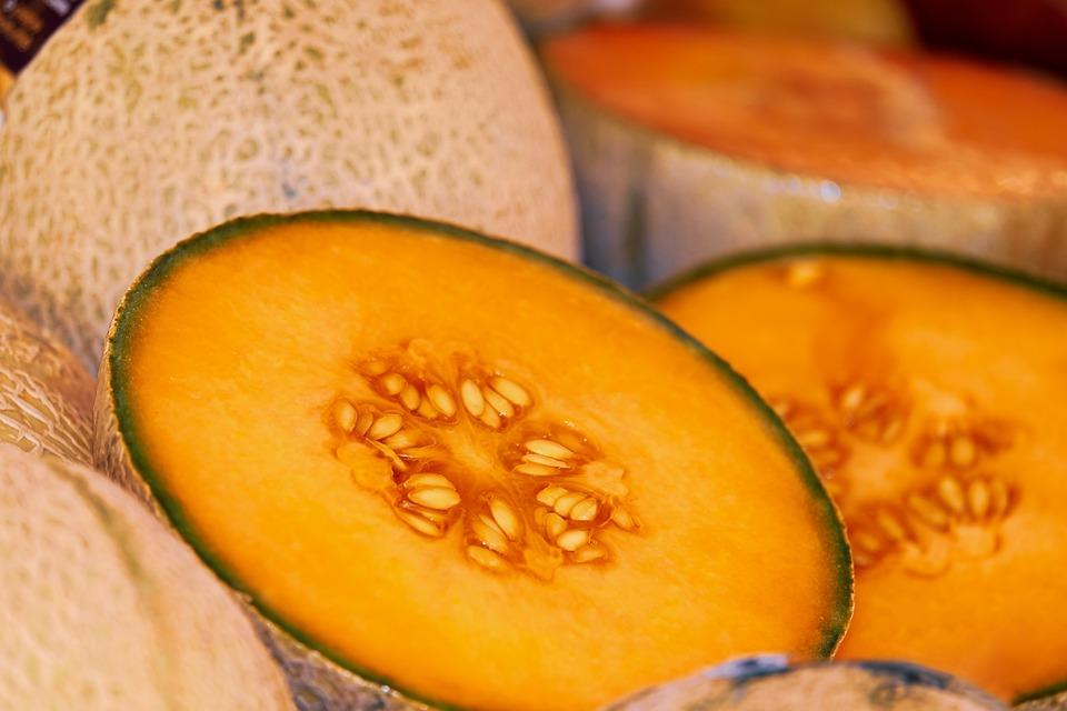 Melon, Galia, Sliced, Pulp, Juicy, Delicious, Fruit
