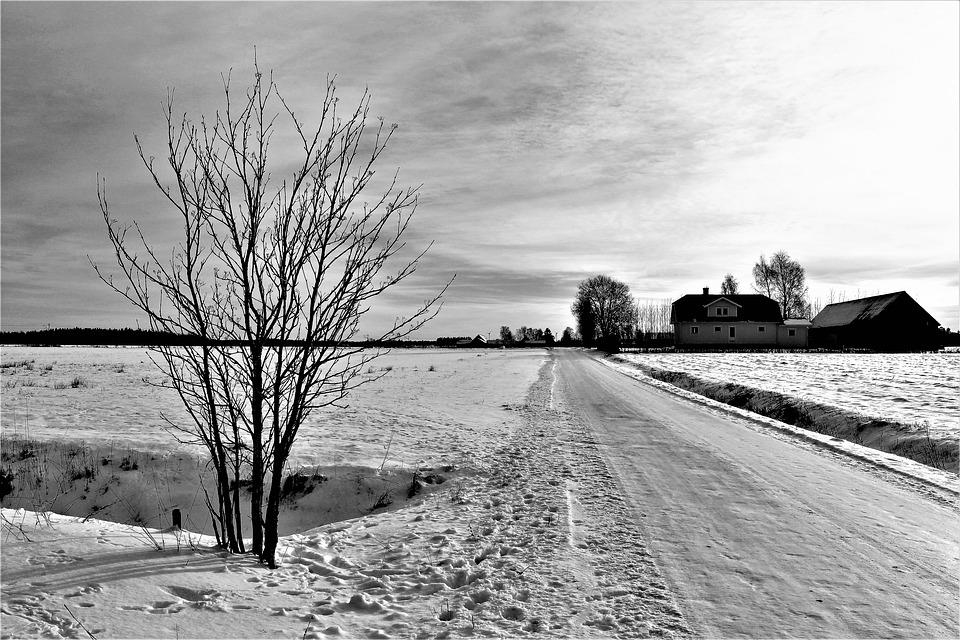 Road, Winter, Nature, Tree, Countryside, Slip