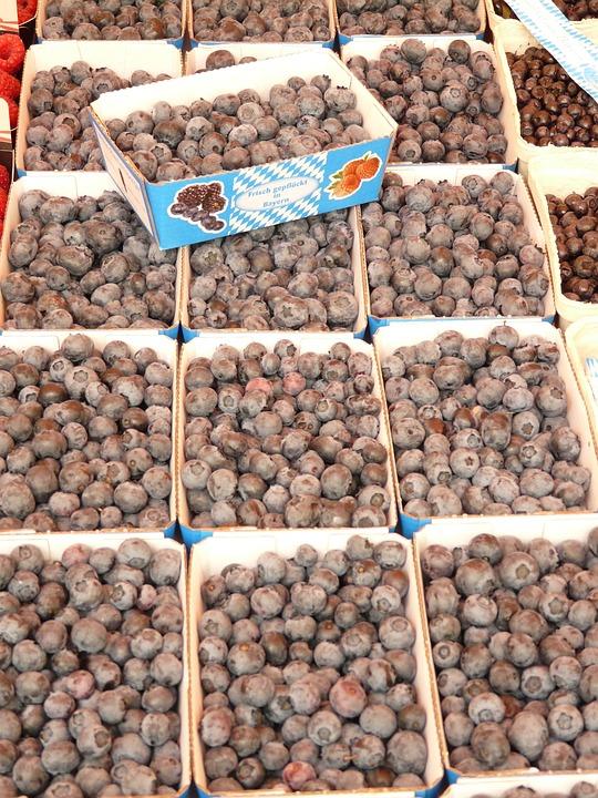 Sloes, Berries, Market, Food, Harvest