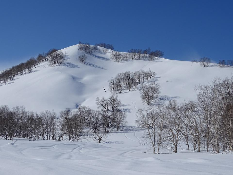 Mountains, Hill, Forest, Slopes, Winter, Cold Day
