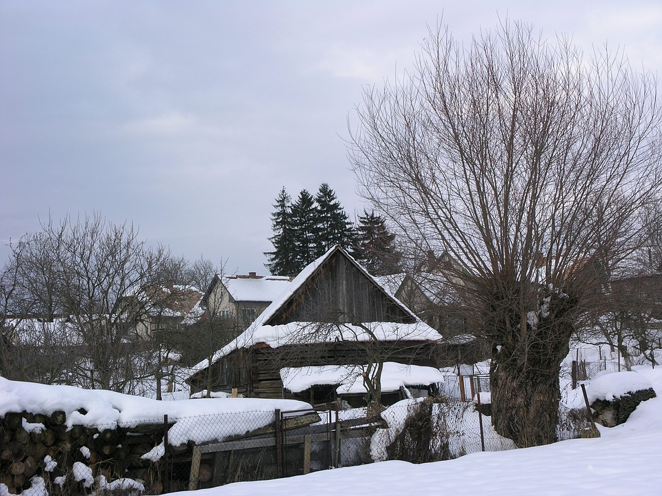 Slovak Chalúpky, Winter In Martin, Snow Cinema