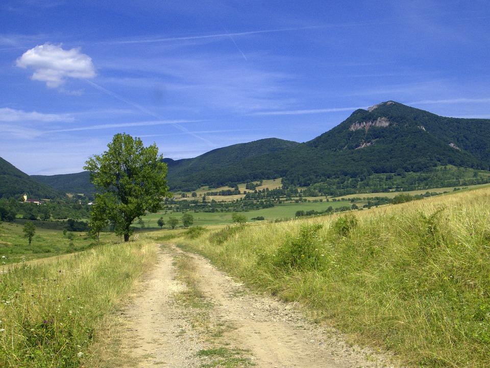 Slovakia, Strážov, Zliechov, Mountains, Meadow, Path