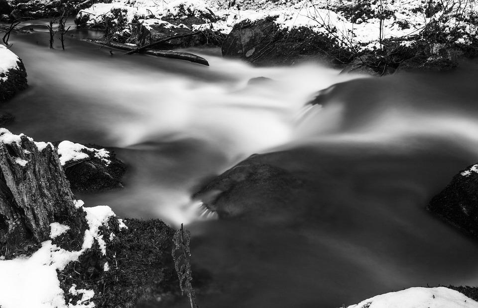 Water, Brook, Forest, Slow Shutter Speed