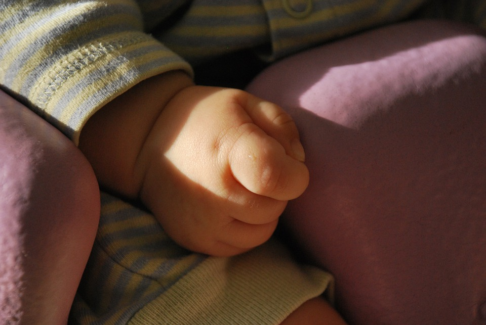 Baby, Hand, Child, Cute, Fingers, Hands, Small, Infant