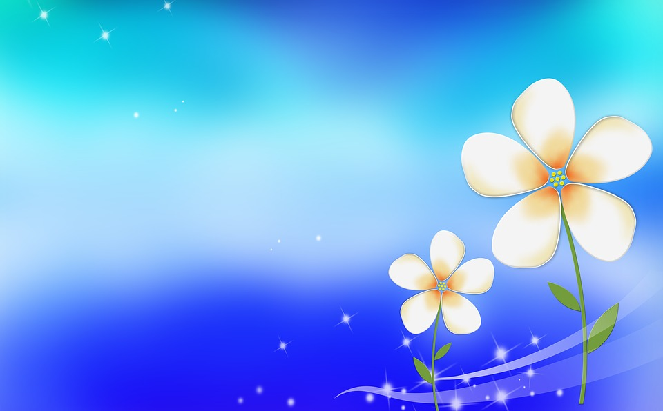 Free Photo Small Fresh Blue Little Flower Flowers Background
