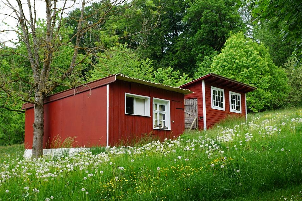 Small, House, Barn, Tiny Home, Mini, Meadow, Field