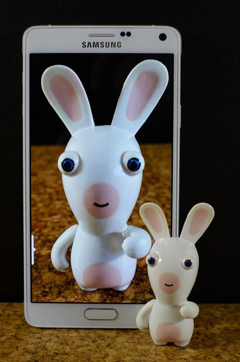 Hare, White, Funny, Smartphone, Samsung