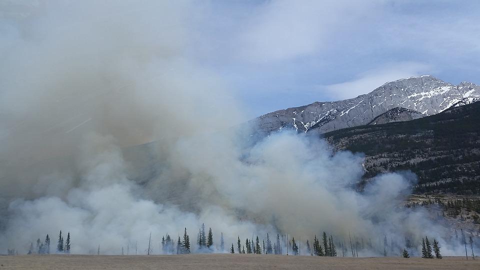 Forest Fire, Wildfire, Smoke, Burn, Mountain