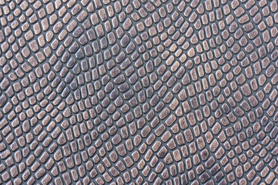 Free Photo Snake Macro Texture Design Background Skin