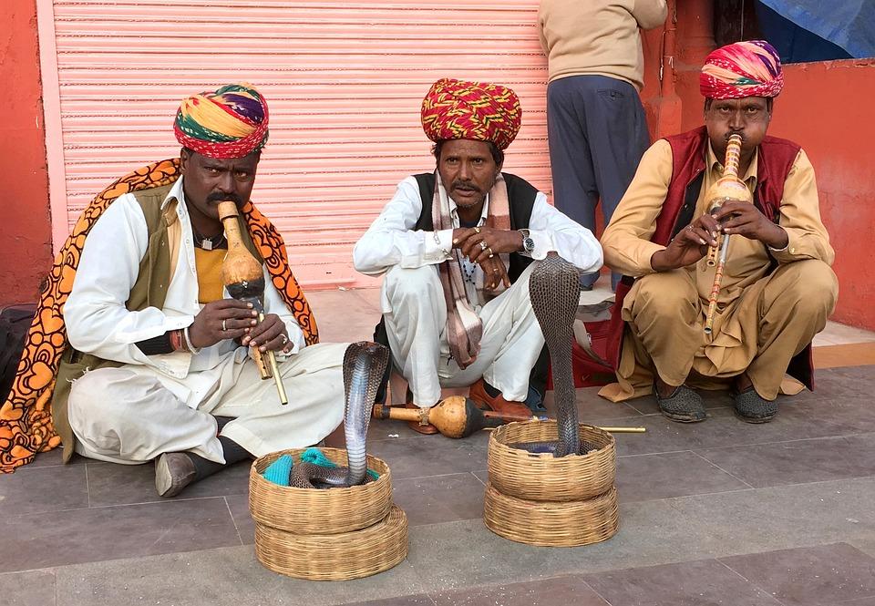 Snake Charmers, Jaipur, Snake, Cobra, India, Charmer