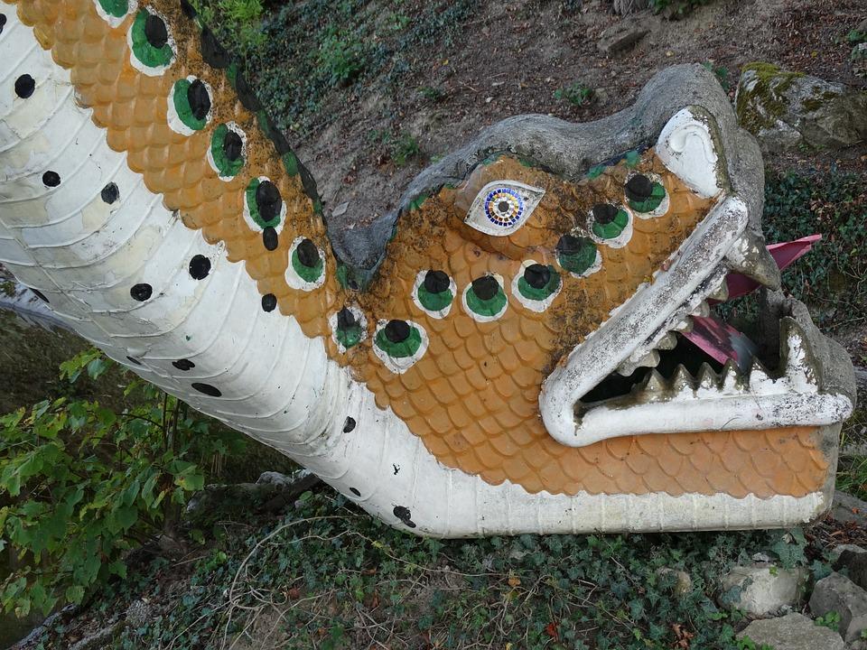Fig, Snake, Snakehead, Reptile, Animal