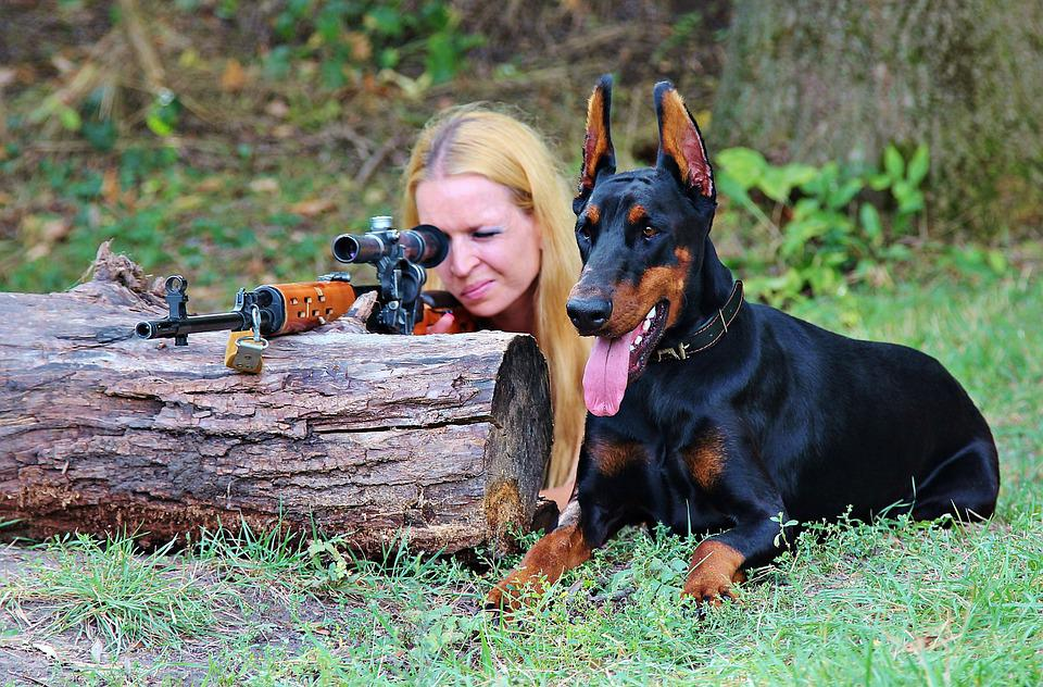 Weapon, Doberman, Dog, Woman, Pistol, Hunting, Sniper