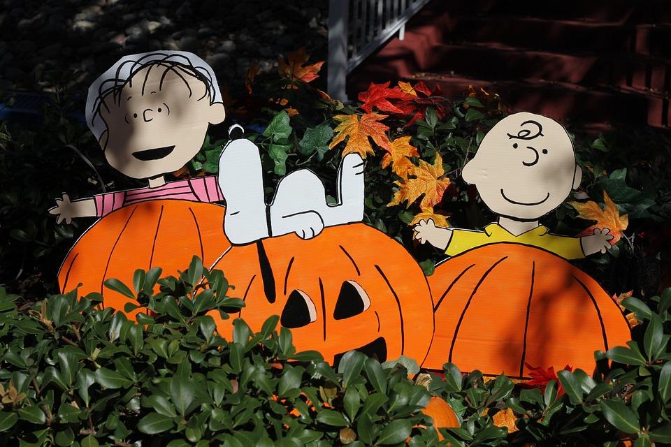 thanksgiving pumpkin halloween snoopy charlie brown