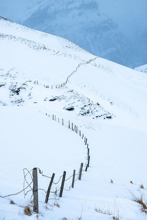 Winter, Grindelwald, Snow, Alpine Nature, Landscape