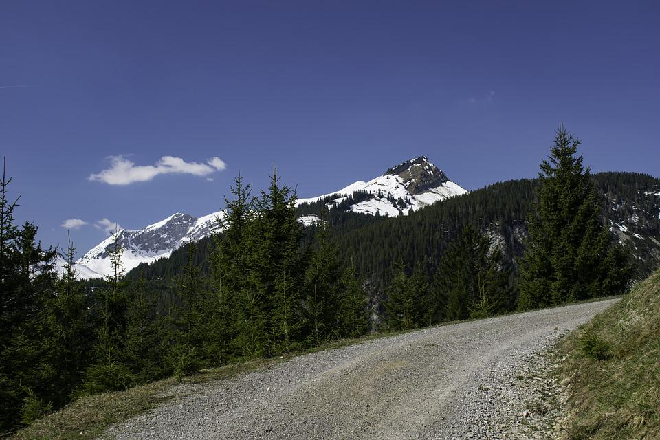 Alps, Mountains, Path, Snow, Trees, Blue Sky, Nature