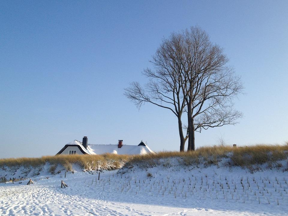 Sea, Coast, Snow, Tree, House Roof