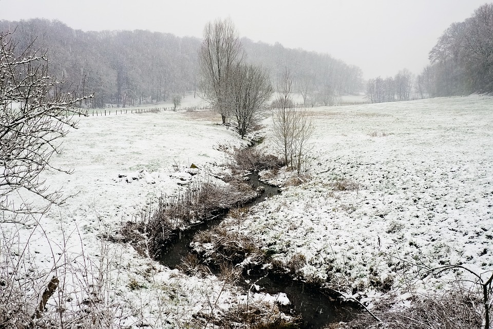 Landscape, Winter, Bach, Snow, Nature, Cold, Wintry