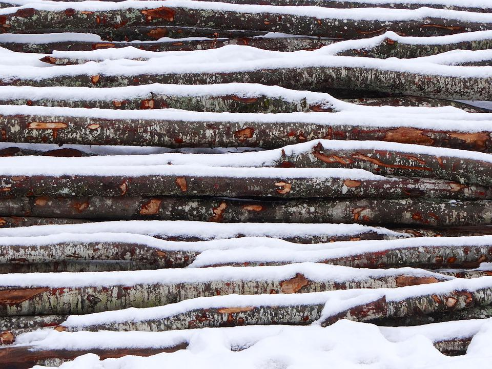 Wood, Snow, Winter, Cold