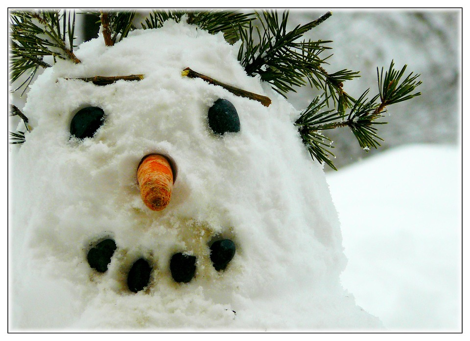 Snow Man, Winter, Snow, White, Face, Smile, All