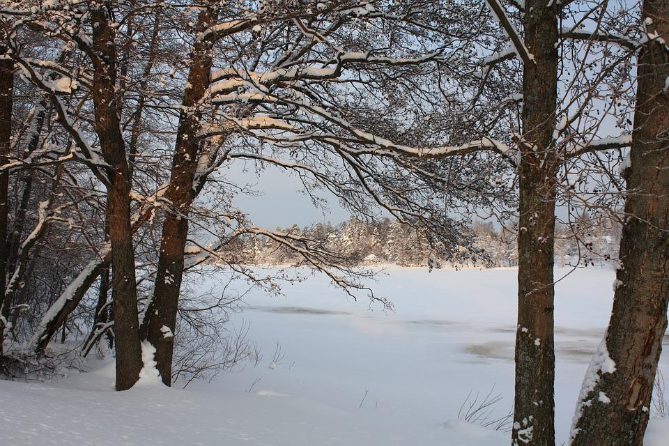 Winter, Finland, Snow, Ice