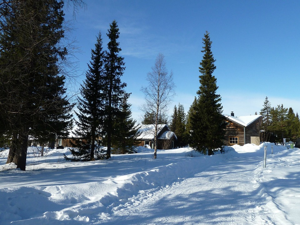 Ice Hotel, Scandinavia, Snow, House, Fir Trees