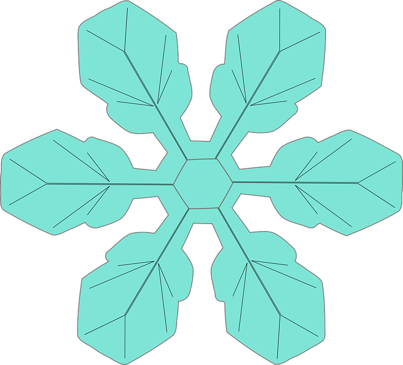Snowflake, Ice Crystal, Crystal, Winter, Snow, Frosty