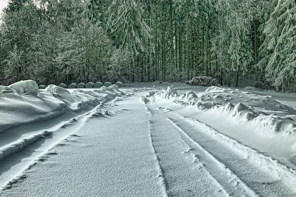 Snow, Winter, Nature, Frost, Frozen, Landscape, Forest