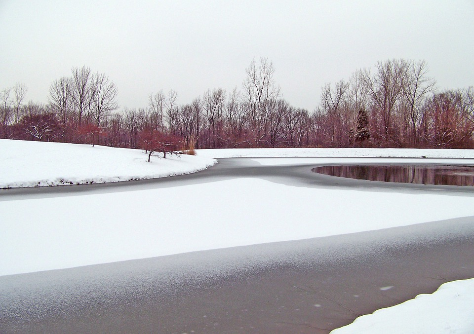 Frozen, Pond, Winter, Ice, Snow, Trees