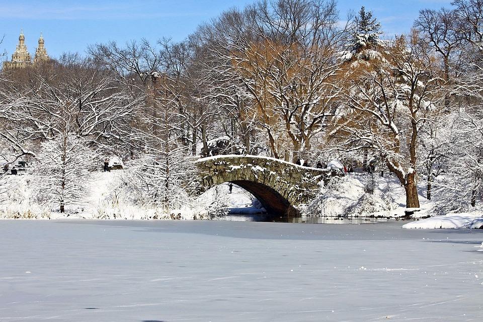Central, Park, Manhattan, New York, Winter, Snow, Ice