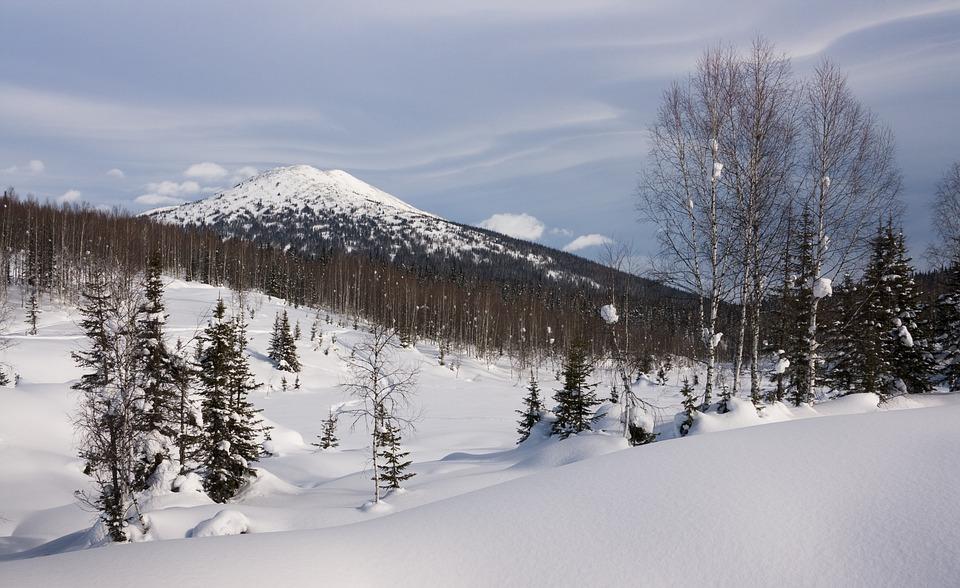 Siberia, Winter, Snow, Kuznetsk Alatau, Cold, Wintry