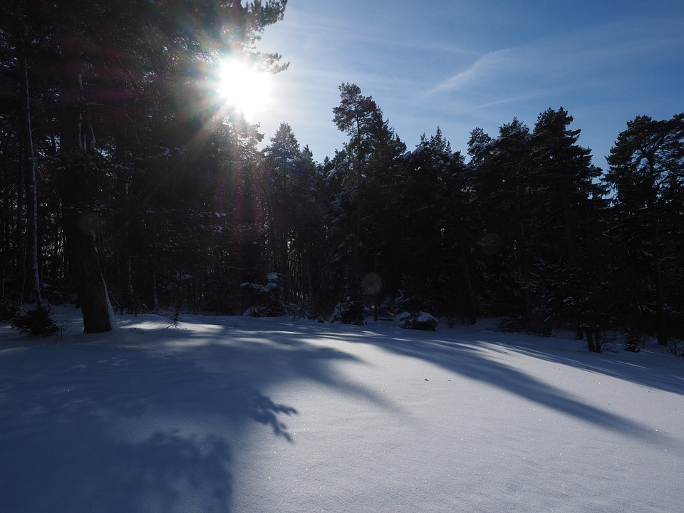 Snow Landscape, Winter, Sun, Shadow, Snow, Cold