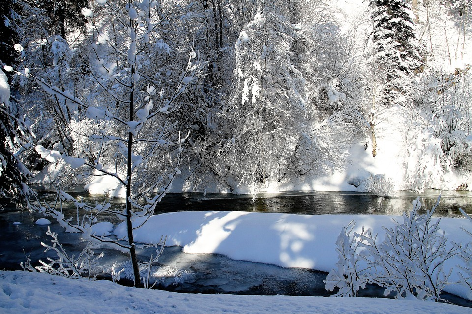 Winter, Cold, River, Landscape, Frost, Snow, Tree, Ice