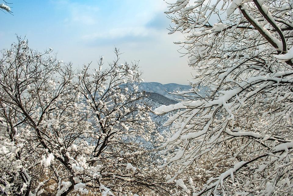 Winter, Snow, Snow Mountain