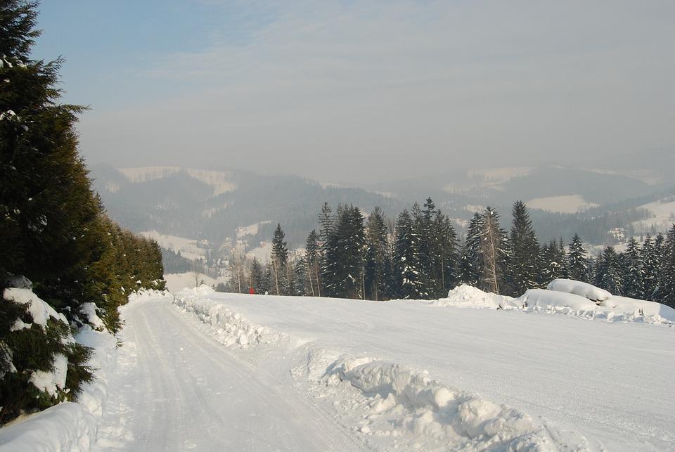 Mountains, Winter, Snow, Tree, Coniferous