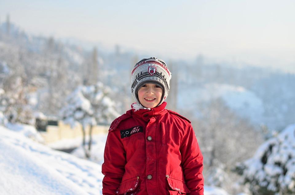 Winter, Snow, Snow Landscape, Nature, Tree, Cold