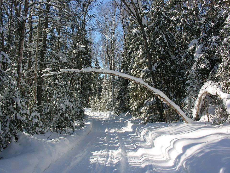 Snow, Sun, Winter, Trail, Cold, Nature, Sky, White