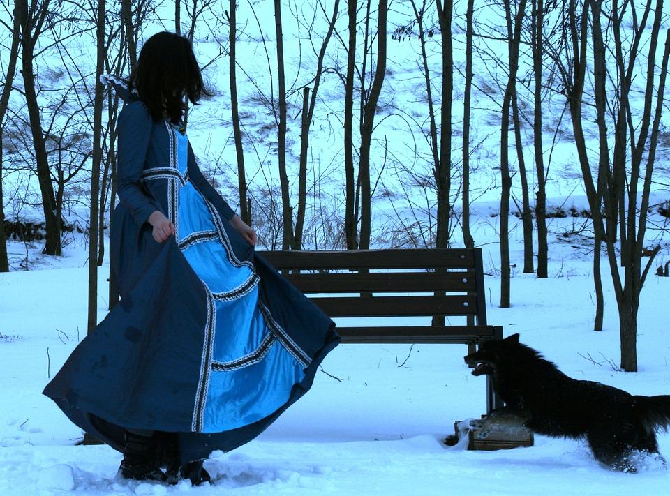 Girl, Princess, Dog, Snow, Blue, Dress, Nice
