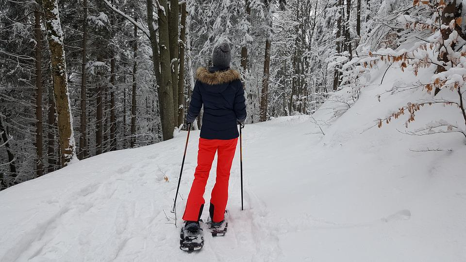 Snow, Winter, Cold, Snowshoeing, Hiking, Snow Shoes