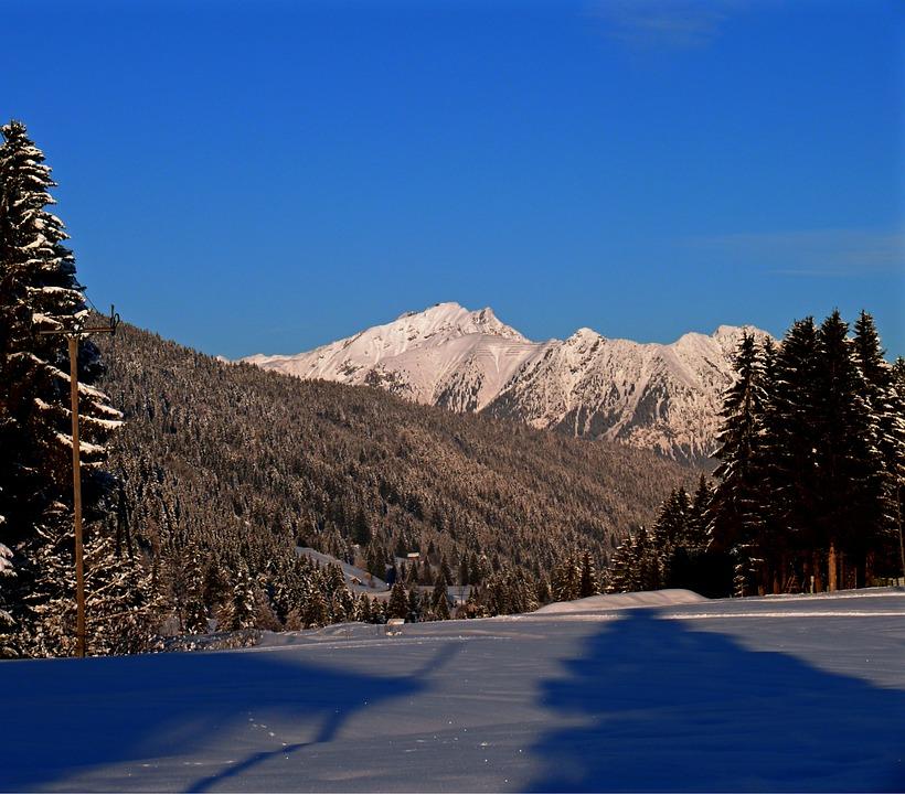 Snow Tracks, Snow, Traces, Cold, Ice, Winter, Snow Lane
