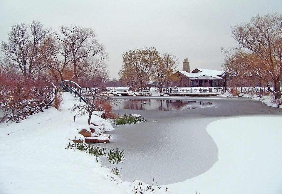 Frozen, Pond, Winter, Ice, Snow, Trees, Bridge