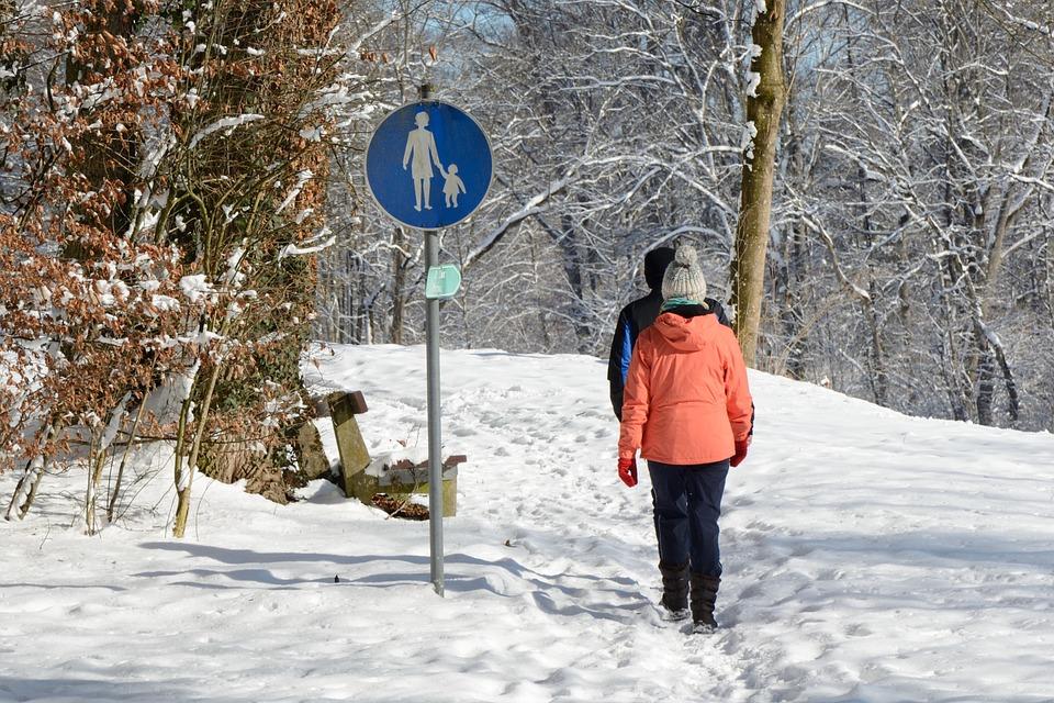 Winter, Snow, Walkers, Personal, Wintry, Walk, Wanderer