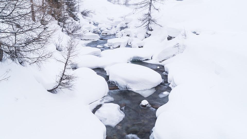 Bach, Snow, Forest, Wilderness, Land, Landscape, Nature