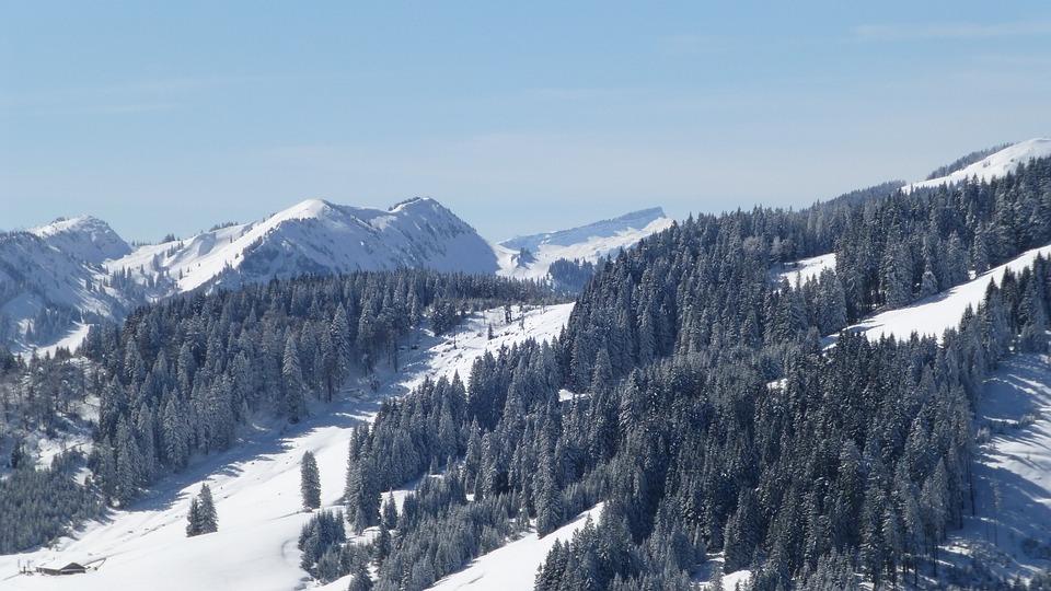 Allgäu, Winter, Snow, Sun, Trees, Panorama