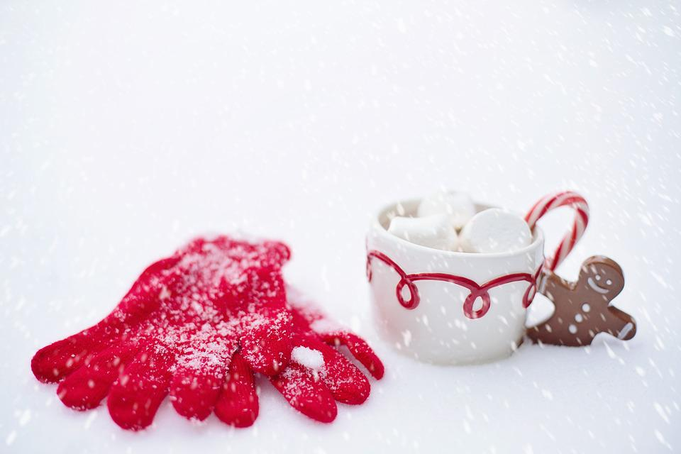 Hot Chocolate, Snow, Winter, Chocolate, Hot, Cup, Drink