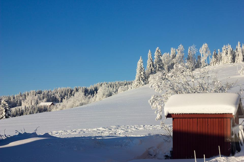 Snow, Winter, Cold, Mountain, Wood, Norway