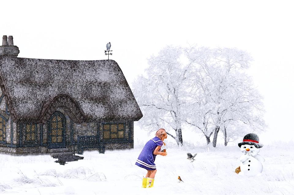 Winter, Snow, Snowfall, Home, Girl, Snow Man, Animals