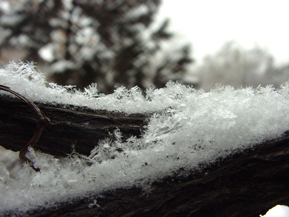 Snow, Snowflakes, Winter, Cold, Frost, Snowflake Frost