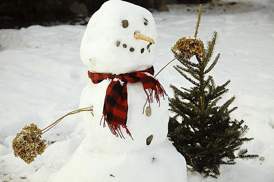 Snowman, Snow, White, Winter, Christmas, Cold, Frost